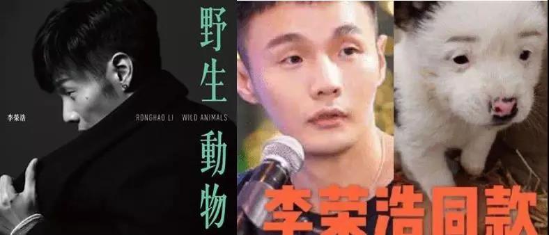 """薛之谦为何要唱""""动物世界"""",背后的原因竟然是?"""