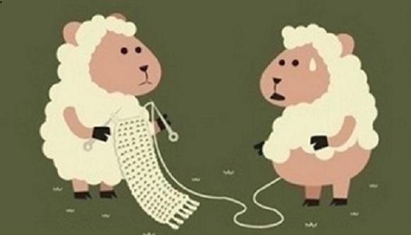 """羊毛党一夜""""薅""""出700万元,电商平台该管管了"""