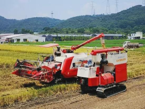 """北斗与5G加持,中国无人驾驶农机完成水稻""""耕种管收"""""""