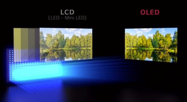 "LCD最后的""挣扎"":MiniLED会抢走OLED的风头吗?"